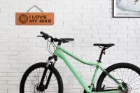 Schild - I love my Bike