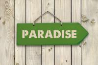Arrow - Paradise